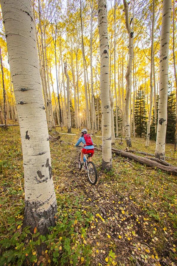 biciclete mtb prin hypersport