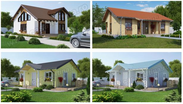 case-de-lemn-modele