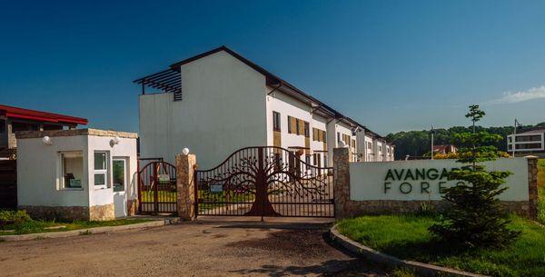 Complex Rezidential Avangarde Forest